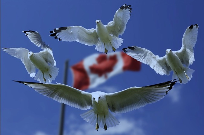 10 Historical Facts About Canada